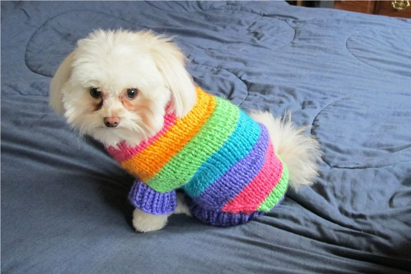 Maggie Rainbow Sweater