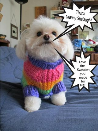 Maggie Sweater 2 (1)_1